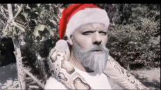 ¿Qué hacen los animales el 31 de diciembre?
