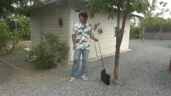 Cuarentena sin perro